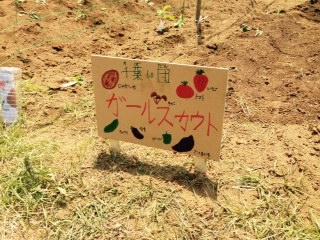 2015 ふれあい農園 看板.jpg